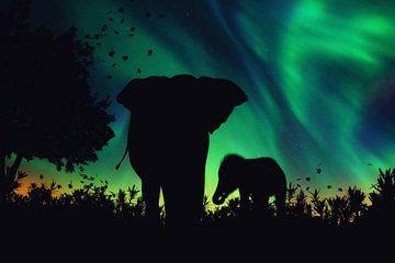 Een silhouet van een olifant met haar kroost van Bert Hooijer