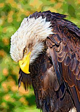 Bald eagle van Leopold Brix