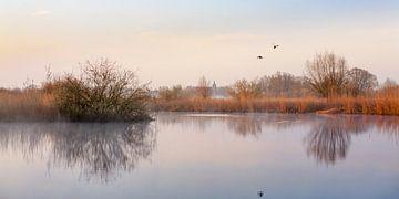 Verstild landschap met vliegende eenden van Evert Jan Kip