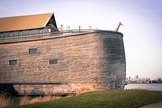 De ark van Noach in Dordrecht van Petra Brouwer