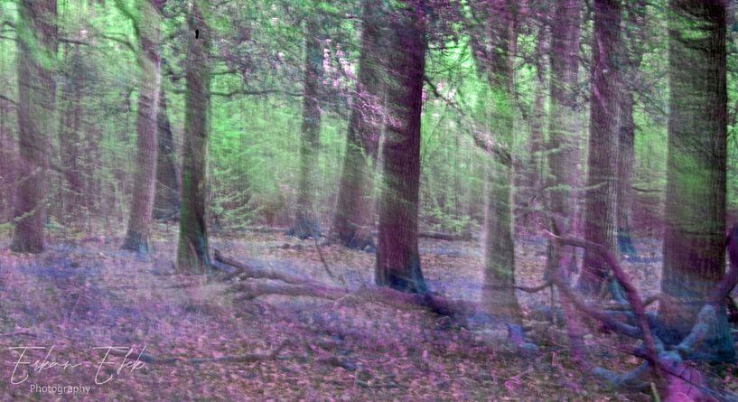 Mystischer Wald von E.H. Efek