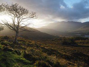 Killarney Ierland van Sanne Bakker