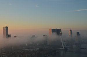 Rotterdam ontwaakt met een mist deken