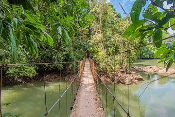 Hängebrücke Costa Rica von Bianca Kramer