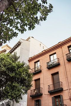 Terracotta gebouw met boom in Madrid, Spanje van Photo Atelier