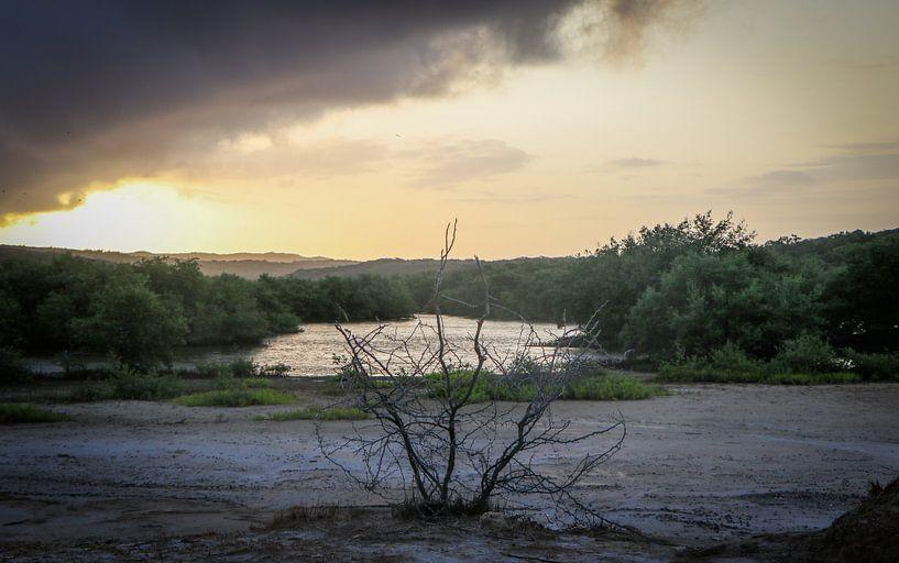 Photo brute d'un lever de soleil au Spaans Lagoen à Aruba sur Arthur Puls Photography