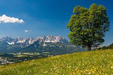 Kitzbüheler Alpen, Österreich von Henk Meijer Photography