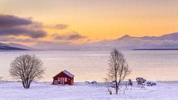 Rood botenhuis in winter, Noorwegen van Adelheid Smitt