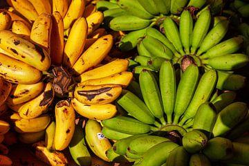 Gele en groene bananen