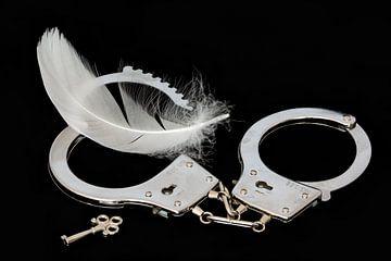 Handschellen, Schlüssel und weiße Feder von Kok and Kok