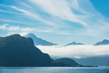 Coast on the Lofoten Islands in Norway van Rico Ködder