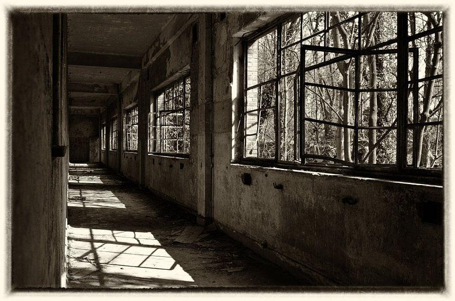 Down the hall van Jaco Verheul