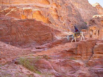 Bedoeïene op zijn ezel in Petra, Jordanië van Teun Janssen