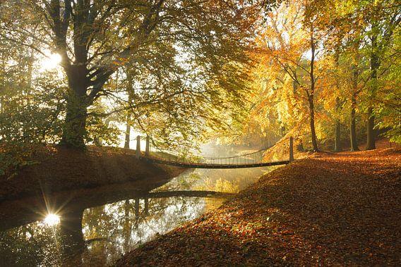 Brug in het bos van Michel van Kooten