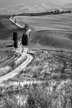 Gladiator's road. van Filip Staes