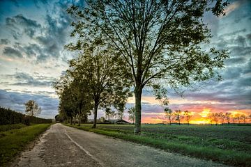 Waar de weg gaat von Maik Jansen