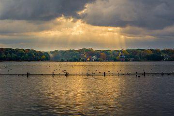 Zonnestralen over de Kralingse Plas  von Arthur Wolff