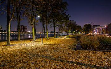 hersft aan de parkkade in Rotterdam van