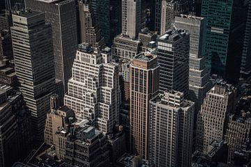 New York in detail van