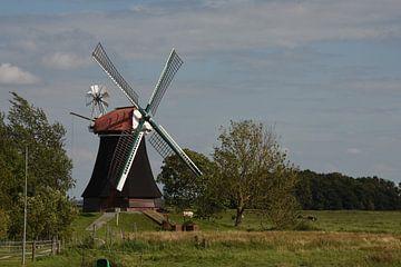 Windmühle Wynhamster Kolk von Klaas Leguit