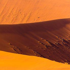 Zandduinen in de woestijn bij zonsopkomst van Chris Stenger