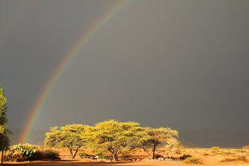Regenbogen mit Sonne und dunklem Himmel Namibia von Bobsphotography