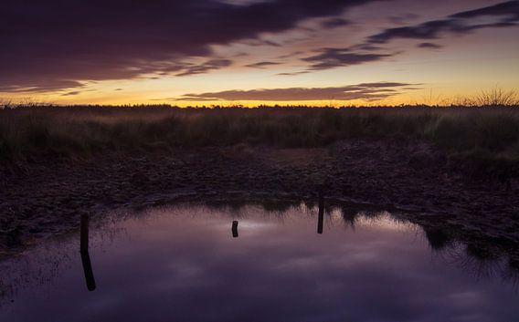 Strabrechtse Heide 112
