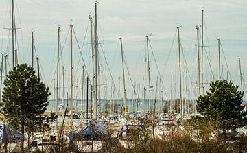 Jachthaven van Irene Lommers
