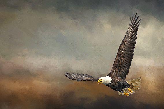 Vliegende Arend In Storm