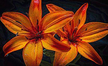 Twee oranje gevlamde lelies met regendruppels van Rietje Bulthuis