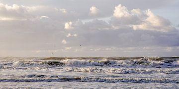 Wellen auf See von Dirk van Egmond