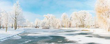 Besneeuwd winterlandschap in het stadspark van Kampen van Sjoerd van der Wal