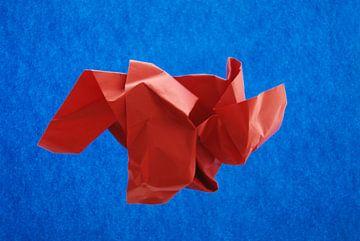 Blauw rood van Brigitte van Ark