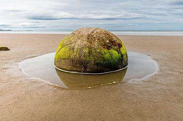 Moeraki Boulders bijna perfect ronde rotsen op een strand in Nieuw Zeeland. van Niels Rurenga