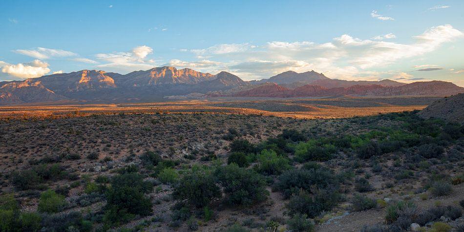 Red Rock Canyon - Las Vegas van Remco Bosshard