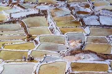 Salinen bei Maras im Heiligen Tal, Peru von Rietje Bulthuis