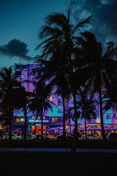 Miami bei Nacht von Amber den Oudsten