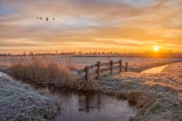 Zonsopkomst in de winter / Sunrise in de winter van Wim Kanis