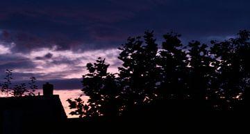 Avond paarse lucht van J..M de Jong-Jansen