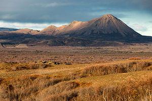 Vulkaan te IJsland van