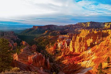 Bryce Canyon National Park zonsopkomst Amerika van Marjolein van Middelkoop