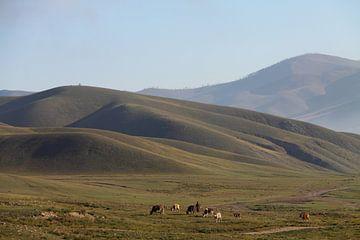 Landschaft südlich von Ulaanbaatar, Mongolei von Marvelli