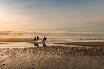Strandlandschaft mit Pferden in Egmond von Marianne van der Zee