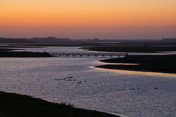 Inlaag bij Heerenkeet in Zeeland van Filip Staes