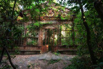 The Greenhouse 4 van Kirsten Scholten