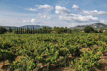 Provence Frankrijk sur Johan Vet