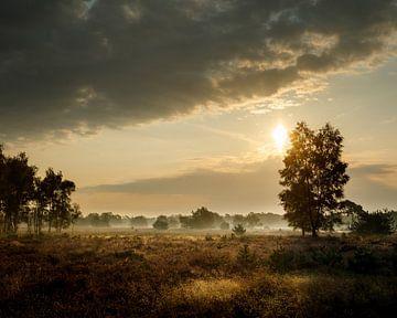Het begin van de herfst von Nando Harmsen