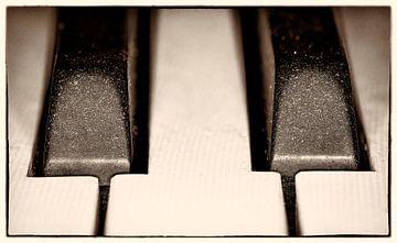 Pianotoetsen von Anton Steenbergen