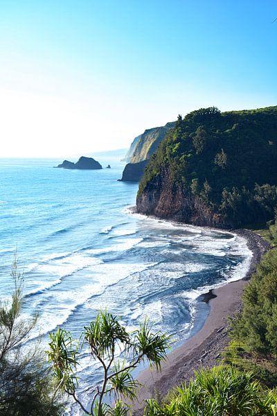 Hawai Big Island noordwest kust van Jaap Verbruggen