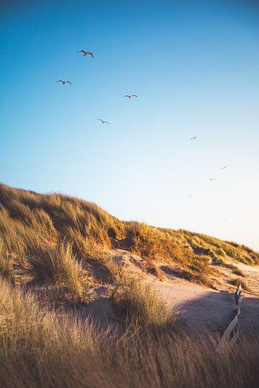 Oostkapelle duinen van Andy Troy